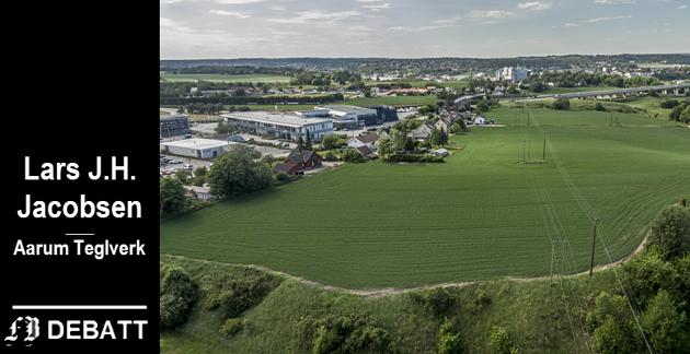 Domberg på Årum kunne gitt industritomter tett inntil E6 for Fredrikstad kommune. Lars J.H. Jacobsen forstår ikke argumentasjonen bak at det i stedet forblir jordbruk her.