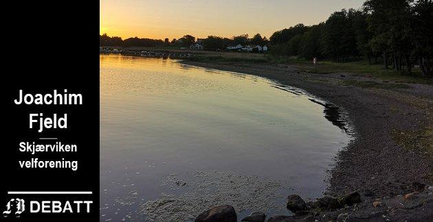Vispen nesten uten alger. – Vi har ikke råtnende alger som ligger og forpester hele stranden, skriver velforeningens leder.