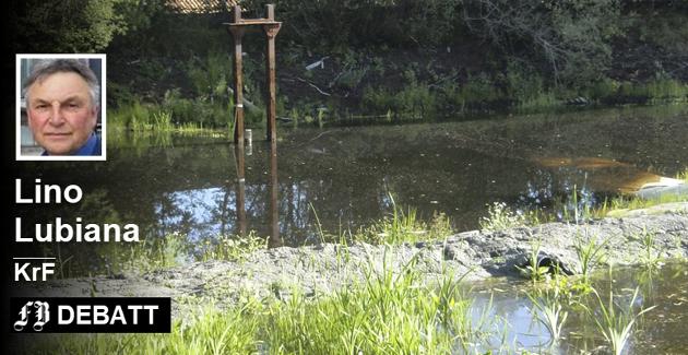 Bjølstaddammen har flere år bak seg med dårlige forhold for dyrelivet. Bildet er fra 2013 da Fredriksstad Blad rapporterte om dårlig klekkeing av salamandere.