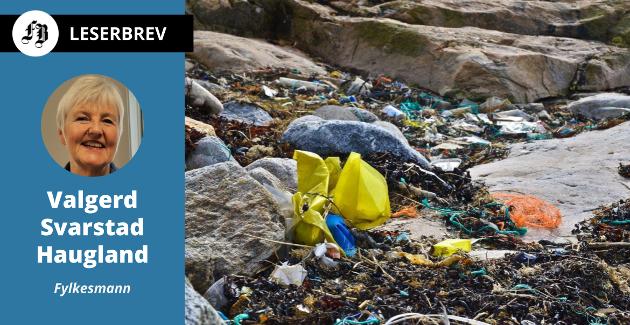 – Tallene fra Akerøya tyder på at innsatsen virker; de siste årene har de funnet mindre avfall der enn før, skriver fylkesmann Svarstad Haugland.