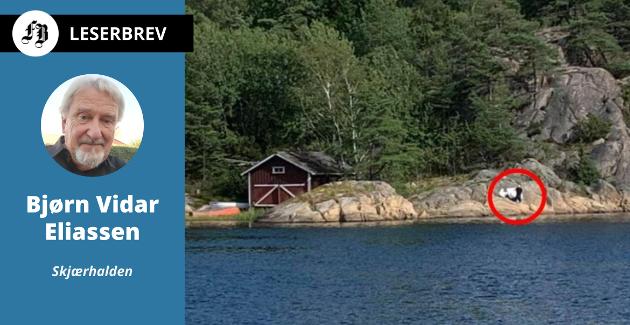 Her blir det PRIVAT-malt på fjellet på Nordre Sandøy. Saken  skapte sterke reaksjoner, og ordfører Mona Vauger beordret at saken skulle prioriteres.