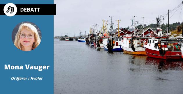 – Nå planlegges det for fremtidens fiskerinæring i Utgårdskilen, med satsing på vekst og arbeidsplasser. Vi har full innsikt og tilgang til å spørre om enkeltsaker og bidra i havneutviklingen, skriver Vauger.