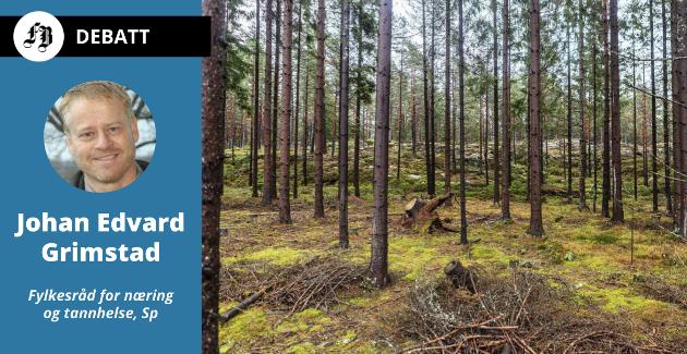 – Skognæringen og treindustrien vil få en viktig rolle for tema som grønn omstilling, sirkulærøkonomi, bioøkonomi, nyskaping og entreprenørskap, melder Grimstad.