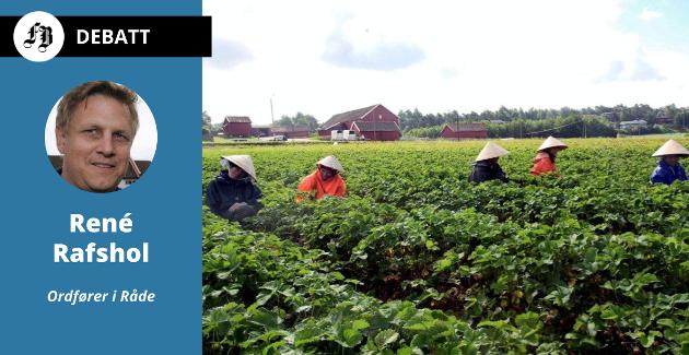 René Rafshol har kjempet for at sesongarbeidere i landbruket skal få komme inn i Norge under pandemien: – Spørsmålet er hva Senterpartiet tenker om dette, spesielt når Sosialistisk Venstreparti og Arbeiderpartiet er imot?