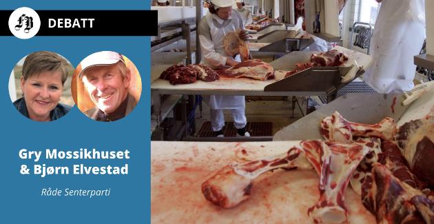 Benrester som blir igjen på slakteriet kan bli råstoff til kjøttbenmel og dermed en kilde til protein for husdyr, fremholder senterpartipolitikerne fra Råde..