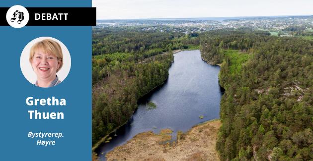 Stordammen, her sett nordfra, er regnet som en av dammene der en ulykke kan få størst  konsekvenser. Bekken herfra passerer nedenfor Kvernhuset ungdomsskole før den har utløp i Veumbekken litt nord for Trosvikbanen.
