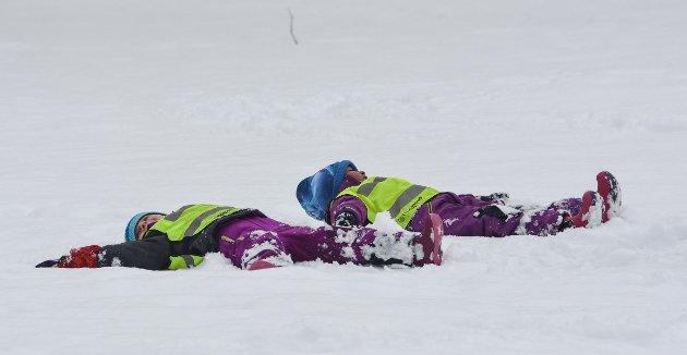 Aktivitetsdag, Berg engler i snø.
