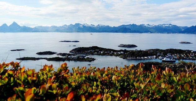 Lofoten, Vesterålen og Senja-området er kjent for sin vakre og storslåtte natur, men det mest spektakulære er landskapet og produksjonen under vann.