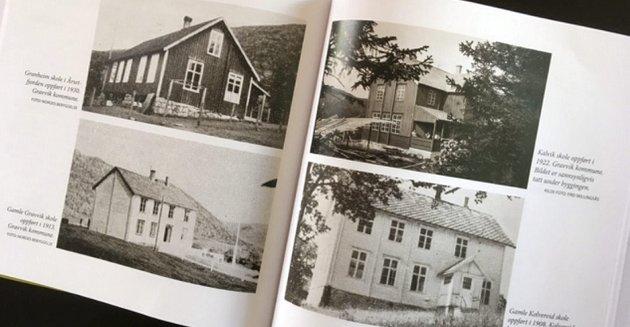 NEDLAGT: – Jeg teller raskt 22 skoler som er forsvunnet i gamle Nærøy kommune. Ved de fleste var undervisninga for lengst avsluttet da jeg selv begynte på skolen i 1963, skriver artikkelforfatteren.