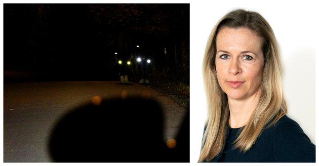 MØRKE GATER: Fotgjengere holder på å bli påkjørt, innbruddstyvene ligger trolig i skjul bak enhver busk og til og med grevlingene har inntatt byen. Hjelp, hva er det Lillehammer kommune gjør mot oss?