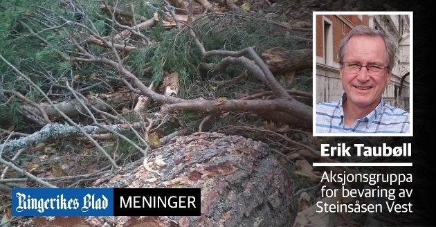 HOGST: - Er denne hogsten en takk for sist til de mange som har engasjert seg for bevaring av fri- og nærturområdet i Steinsåsen, spør Erik Taubøll.