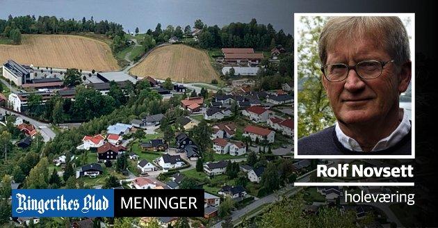 KVALITETER:  - Vi bør være opptatt av å ta vare på kvalitene når det skal bygges nytt her, skriver Rolf Novsett.
