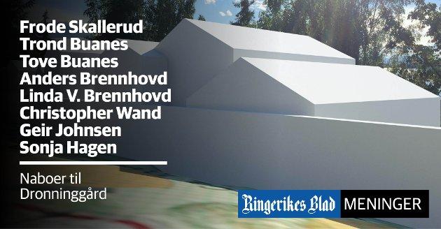 MODELL: – Det er et anerkjent byrå som har laget vår 3D-modell, sier naboene til det planlagte Dronninggård i Sundvollen.