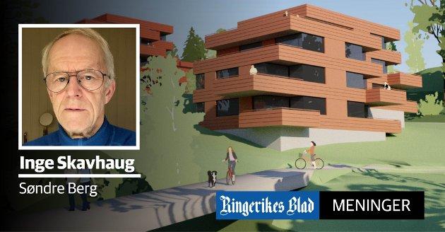 RASERING: – Boligblokker i Borgerenga er en rasering av et eneboligområde, skriver Inge Skavhaug. (illustrasjon: Dyvik & Fasting Arkitekter)