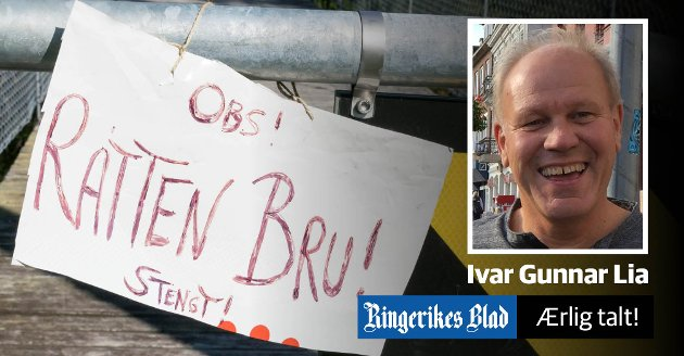 EN OVERGANG? - En kamp for Borglund hengebru på Veme - et slags symbol på bygdeutviklingen...?