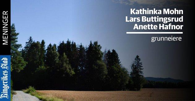 SKOGKANT: Den nye veien over Tanbergmoen skal gå i skogkanten mot nord.