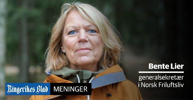 ANNERLEDES: – 2020 skrives inn i historiebøkene som det store annerledesåret, skriver Bente Lier.