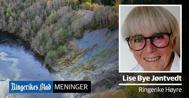 TEMAMØTE: – Vi trenger et temamøte om kvikkleire og rasfare i Ringerike, sier Lise Bye Jøntvedt (H). Bildet er fra raset ved Hovsenga i fjor høst.