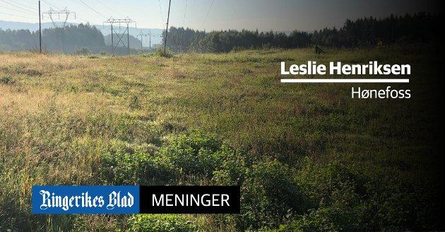 ETTERDRIFT: – Endringen gjelder gebyret for etterdrift av Tyrimyra avfallsdeponi, skriver Leslie Henriksen Henriksen, og henviser til HRAs hjemmeside. (skisse: Ringerike kommune)