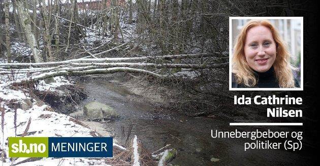KVIKKLEIRE: Nede ved Unnebergbekken går det stadig små ras, forteller Ida Cathrine Nilsen. Området er skravert med rødt av Norges Geotekniske Institutt (NGI) på grunn av høy risiko for kvikkleireras.