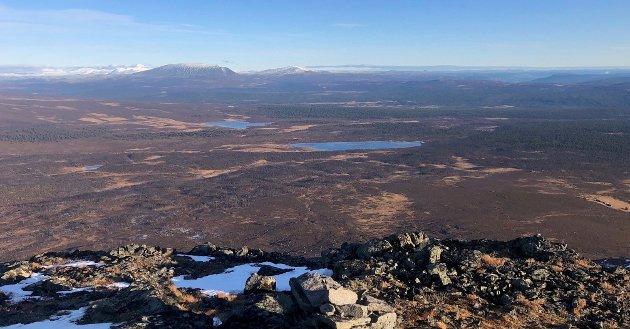 Bilde viser områdene ved Flekkvatnet og Strålvatnet.