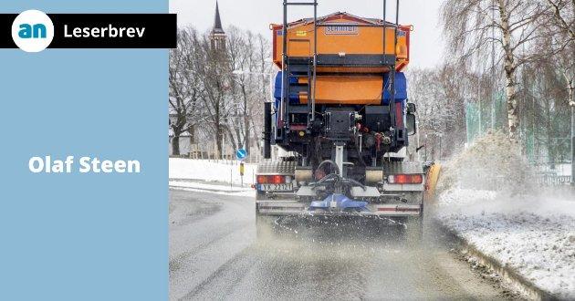 - Salt er skadelig og vegvesenet bør stoppe saltingen av veiene, skriver Olaf Steen.