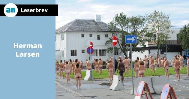 - De eldre får dessverre ikke god eldreomsorg av bilder av ei naken ræv, skriver Herman Larsen og tenker på arbeidet med å gjøre Bodø til europeisk kulturhovedstad.