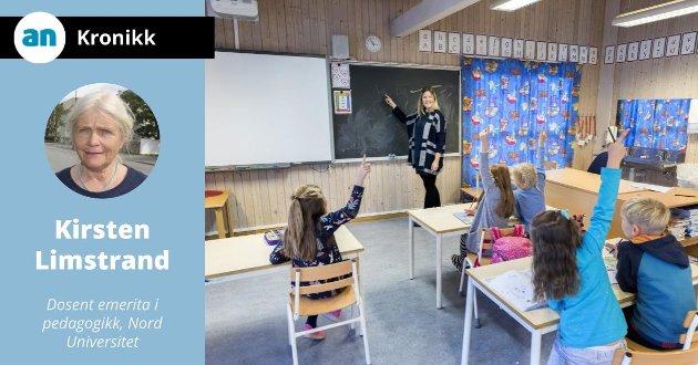 - I den politiske debatten foran høsten stortingsvalg anbefales at lærerutdanning blir et hovedtema, også i distriktspolitisk sammenheng, skriver Limstrand.