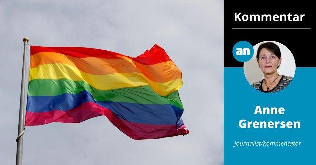 Mange av dem som ivrer for å endre flaggloven, begrunner det med at de ønsker å heise regnbueflagget på offentlige bygninger som rådhus, fylkeshus og andre institusjoner. Det er ingen god idé.