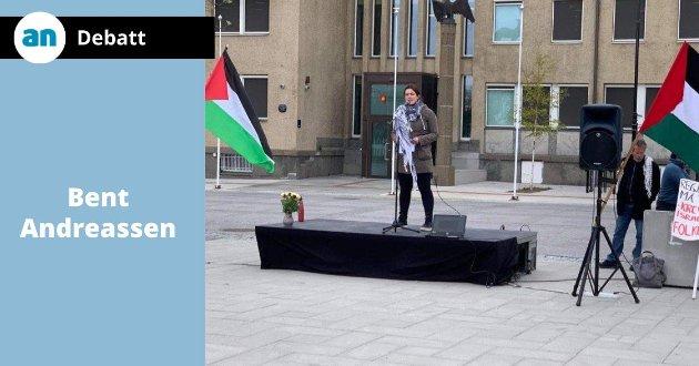 Fra Palestina-demonstrasjonen i Bodø.