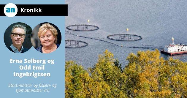 Anlegg for lakseoppdrett med spesialbåter for fiskeoppdrett i Sjona, på Helgelandskysten.