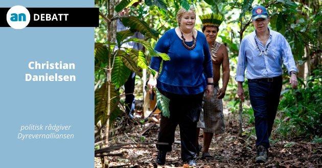 Statsminister Erna Solberg får omvisning i regnskogen i Brasil.