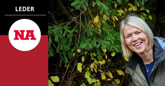 Ordfører Arnhild Holstad (Ap) vil fratre sin rolle som ordfører i Namsos kommune. Hun er en dyktig og respektert ordfører som burde ha stått i vervet fram til neste kommunevalg. Det mener NA på lederplass.