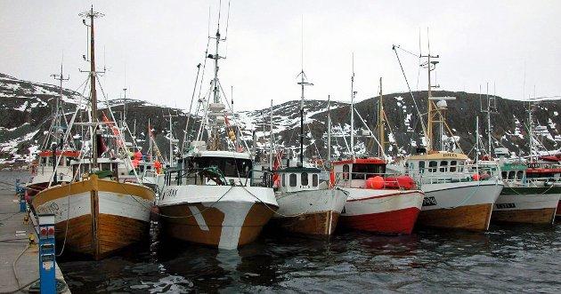 SV har sagt klart fra at trålerne må fases ut. En utfasing må skje over tid, fordi den gir både fiskere, fiskeindustri og trålerredere forutsigbarhet og tid til å omstille seg, skriver artikkelforfatterne
