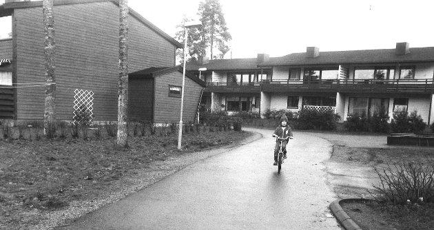Øreåsen 1982