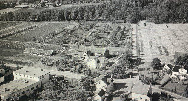 TVEITEN: Innsender Eyvind Strøm vokste opp her.