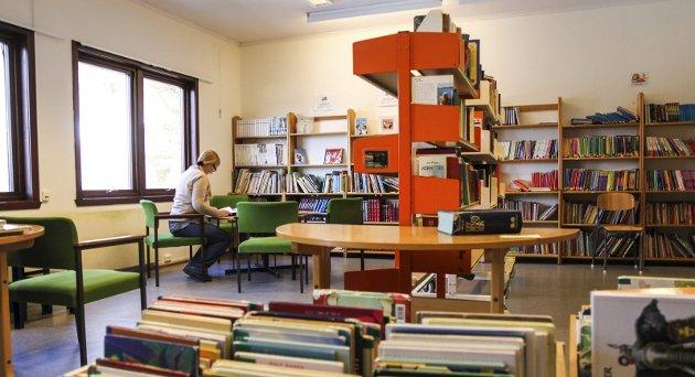 SKOLEBIBLIOTEK: Anne Jorid Akselsen mener at et godt skolebibliotek kan være løsningen på Høyre-politiker Fredrik Holms bekymringer for spesialundervisningen i Halden-skolen.