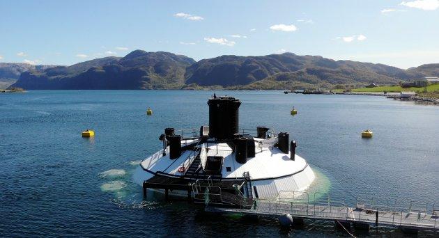 Den nye havbruksstrategien til regjeringen sier lite om de reelle mulighetene til å satse på en av de mest åpenbare teknologiene: semilukkede anlegg i sjø, som for eksempel FishGlobe på bildet.