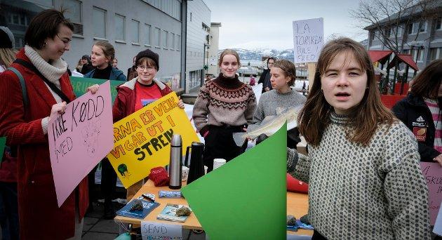 Bra ungdom: Dersom norsk ungdom ikke gjør mer galt enn å kreve tiltak for å redusere utslippene av klimagasser, ja da har vi mye bra ungdom her i landet, skriver Roger Ingebrigtsen.
