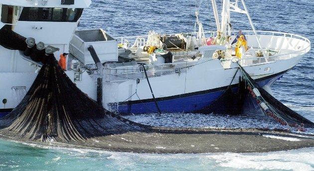 Høyre-politikere er bekymret over at Arbeiderpartiet kan komme til å legge seg på SVs linje i fiskeripolitikken.