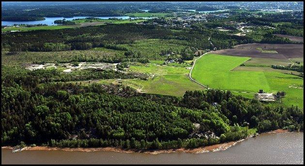 Anne Ekstrand misliker planene om utbygging i Kalnesskogen. «Jeg kan ikke forstå at det i det hele tatt kan planlegges en slik utvidelse av næringsarealer akkurat her. Det er forferdelig trist at den fine skogen som brukes av så mange, daglig, kanskje skal ødelegges», skriver hun i dette innlegget. (Foto: Jarl M. Andersen)