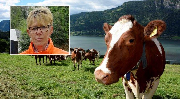 JORDBRUK: Inntektsopptrappingen må skje helt uavhengig av ei ny stortingsmelding. i Oppland, tar til orde for ei ny stortingsmelding om landbrukspolitikken. Ei ny stortingsmelding er en langsiktig prosess og vil få lite innvirkning på landbrukspolitikken kommende stortingsperiode, skriver Astrid Olstad.