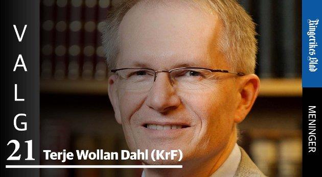 MYKE VERDIER: – Avkastning er mer enn kroner, skriver Terje Wollan Dahl (KrF).