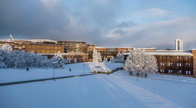 UiT har vokst raskt de siste årene gjennom en rekke fusjoner. De spiller nå i den norske eliteserien for forskning, utdanning og kunnskap. Da er det ikke lurt å gjøre rekruttering av styremedlemmer til et lokalt kretsmesterskap, skriver Skjalg Fjellheim.