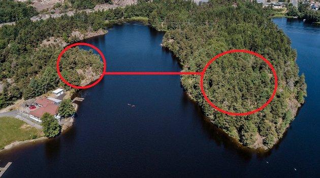 Planene om en klatrepark overfor Rundhuset i Nesparken inkluderer zipliner over til Furututen og Tollertangen
