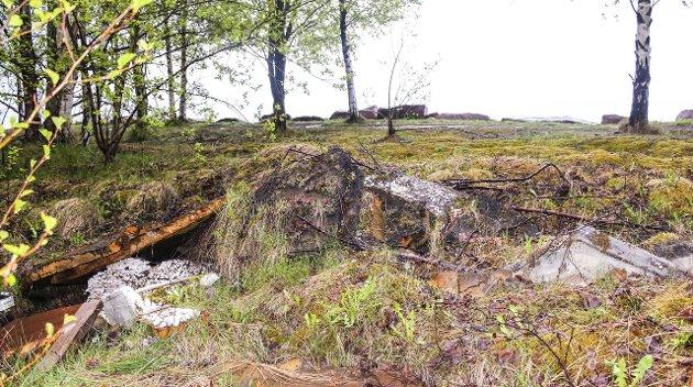 TYTER FRAM: Det tyter fram søppel når våren kommer. Illustrasjonsfoto.