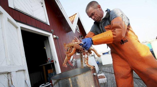 SULTEN SEL: I følge yrkesfisker Kjetil Andersen, spiser selen stadig opp fisken fra garnet hans.