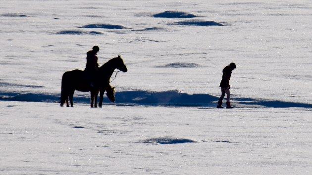 1224: Den ene rytteren har steget av for å sjekke isen