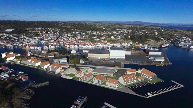 Forslag til tilpasset arkitektur, med bolig og næring på Steiningsholmen i Skudneshavn