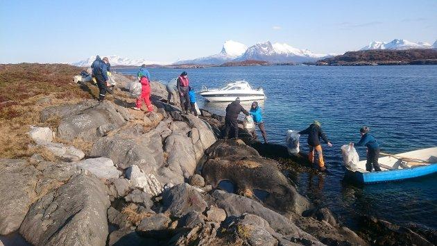 Folk er ivrige og deltar gjerne i fellesskap. Her lempes det søppelsekker samlet på holmene i Karlsøyvær. Bak ser vi Strandåtind og Eidetind.